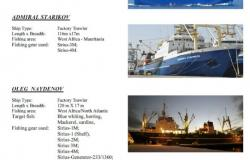 vessel-supplied-P1-31e9bd80b8802bf23a9cc15a31f6b9f3.jpg
