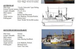 vessel-supplied-P15-cd5748bfb98b44f75e0ad255d783cd73.jpg