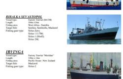 vessel-supplied-P4-93c66f3cdcf85af2e75317ddd8e85296.jpg